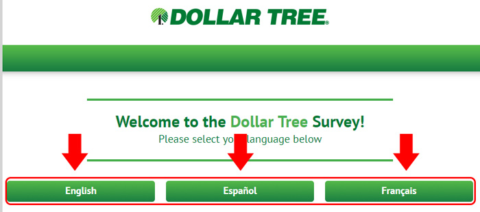 dollar tree survey language options