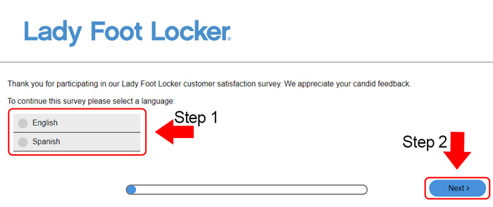 lady foot locker survey language