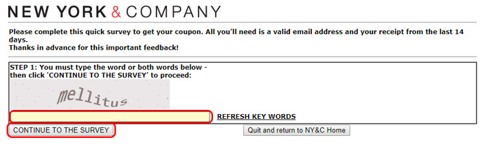 new york and company survey page