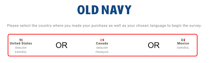 old navy survey language